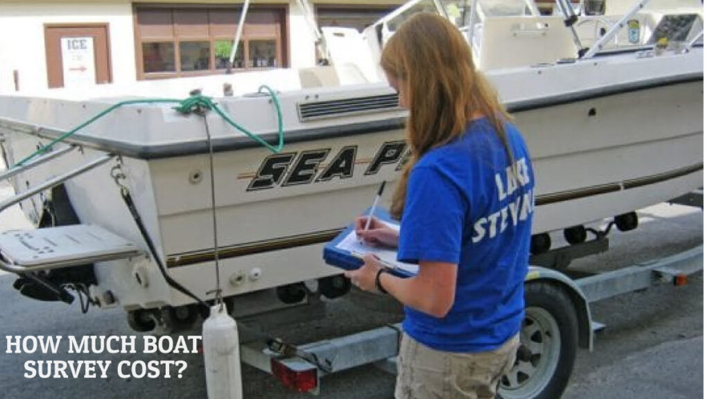 boat survey cost